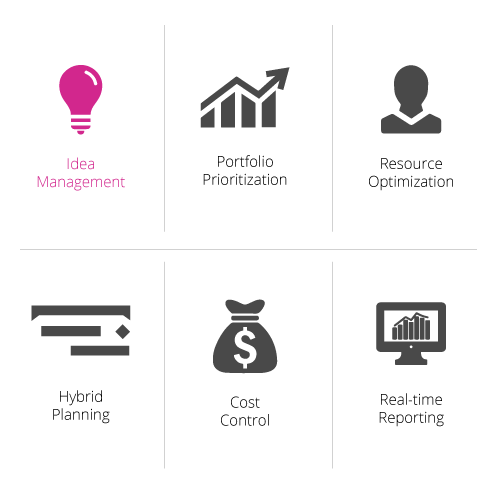 The Main PPM Functions: Idea, Portfolio, Resource, Hybrid planning, Cost, Reporting
